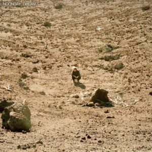 BEN HOWARD – Noonday dream discos nuevos junio